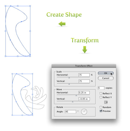 Create Shape and Transform