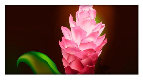 Illustrator Tutorial: Gradient Mesh Flower