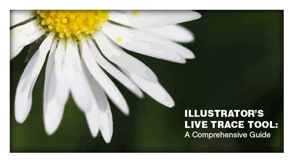 A Comprehensive Guide to Illustrator's Live Trace Tool and More