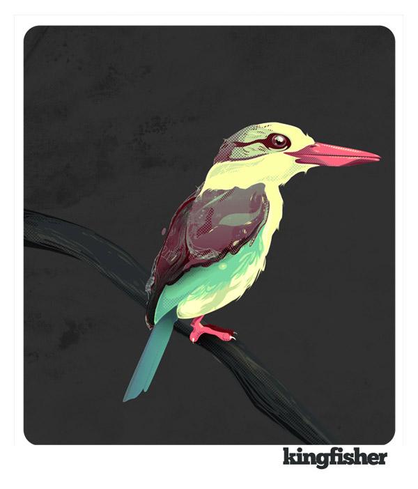 Birds - Kingfisher by Ioana Sopov