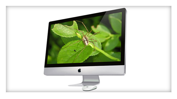 How to Create a Photorealistic iMac and Magic Mouse