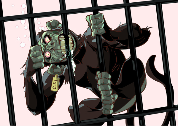 Crazy Monkey by mendigo-amigo
