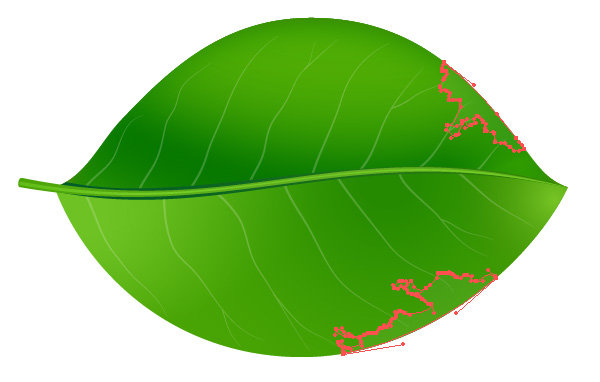 Green Leaf Vector nature