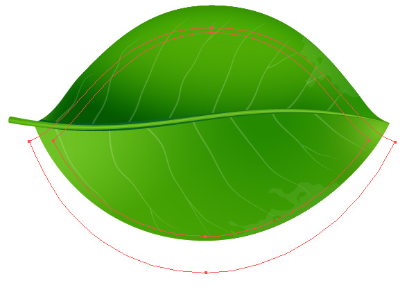 Green Leaf Vector dimension